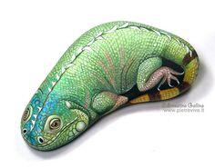 Iguana by sassidipinti, via Flickr