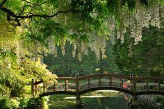 Enchanting bridge at Hatley Park Castle / Vancouver Island . near Victoria, British Columbia Canada Beautiful World, Beautiful Gardens, Beautiful Places, British Columbia, Victoria Island, Parcs, Vancouver Island, Dream Garden, Oh The Places You'll Go