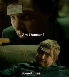 Sherlock Fandom, Sherlock Tumblr, Sherlock Holmes Bbc, Shinee Sherlock, Sherlock Holmes Dibujos, Quotes Sherlock, Funny Sherlock, Sherlock Poster, Watson Sherlock