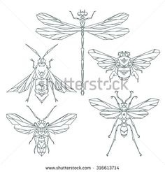 Insect icons, vector set. Abstract triangular style. bee, bumble bee, dragonfly, wasp