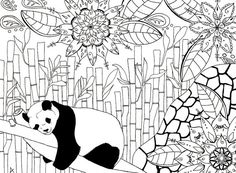 Adult colouring page panda bamboo mandala by LaFabriqueDuChatBleu