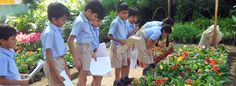 Nalanda International School Baroda