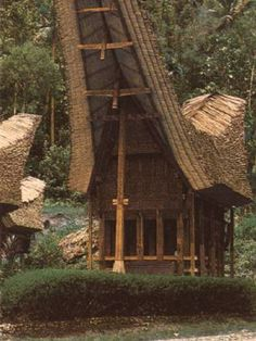 Tongkonan is the traditional ancestral house, or rumah adat of the Torajan people, in Sulawesi, Indonesia