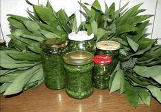 Medvedí cesnak je jedna z prvých bylín, ktoré nám začínajú kvitnúť na jar. Je to veľmi obľúbená surovina, ktorá sa môže využívať naozaj všestranne. Rastie v lesoch v marci a apríly. Má charakteristickú vôňu. Avšak … Pesto, Pickles, Cucumber, Mason Jars, Korn, Health, Health Care, Mason Jar, Pickle
