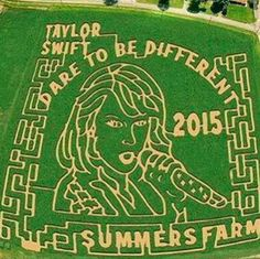 Summers Farm in Frederick, Maryland dedicated its corn maze to Taylor Swift