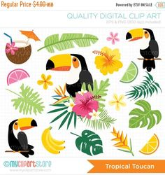 TROPICAL TOUCAN Vector Clipart: Toucan clipart, tropical plants, coconut cocktail, lemon, lime, grapefruit slices, margarita glass, summer vacation, hibiscus flowers, starfish, hawaii, bird of paradise, tropical flowers, palm leaves, luau flowers, aloha, beach, Brazil, Rio, tropical birds --------------------------------------------------------------------------------------- ► Similar Items Available Here: http://etsy.me/1sjhhlT…