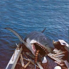 the left-to-right shark smashes through Orca II's transom. The prop shark was badly damaged as a result