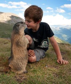 8-YEAR-OLD HAS AMAZING FRIENDSHIP WITH ALPINE MARMOTS