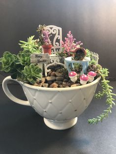 Fairy garden in a teacup. Live and fake succulents, cactus potting mix and pea gravel. Wooden pots painted to look like clay pots. Plastic doll furniture painted to look like metal. Created by: Melanie Weise