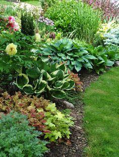 A lovely shade garden of Hostas and Coral Bells.: #FrontGarden