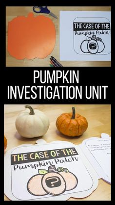 This hands-on pumpkin investigation is one of my all time favorite units to teach!  I love that my students get so excited to explore and practice being little scientists!  Measuring, graphing, tasting, art - it's all included!  This unit if perfect for Kindergarten, First Grade, and even Second Grade!