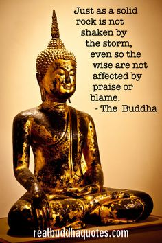 Real Buddha Quotes Page 5 Verified Quotes from the Buddhist Scriptures Buddha Wisdom, Buddha Zen, Gautama Buddha, Buddha Buddhism, Buddha Quote, Buddha Life, Tiny Buddha, Buddha Bowl, Buddhist Teachings