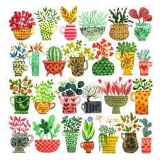 25 Ideas For Plants Illustration Pattern Succulents Watercolor Journal, Watercolour Painting, Watercolor Flowers, Painting & Drawing, Watercolor Succulents, Watercolours, Drawing Tips, Plant Illustration, Watercolor Illustration