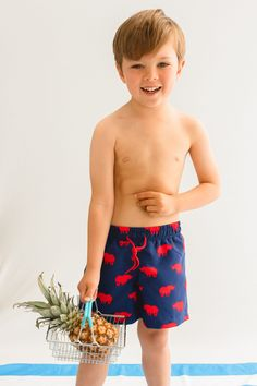 Navy and red Rhino print kid's drawstring swim shorts. Available in men's sizes too, each collection from Galago Joe is dedicated to one animal, with of all profits being donated to associated charities. Kids Swimwear, Swim Shorts, Charity, Navy, Red, Collection, Fashion, Hale Navy, Moda