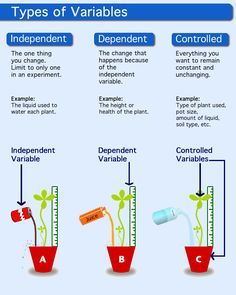 description of independent variable, dependent variable, and control (5.2A describe, plan, and implement simple experimental investigations testing one variable)