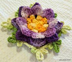Flor de Anis Dupla