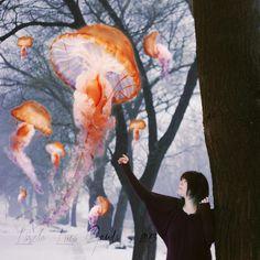 surrealism jellyfish - Google Search