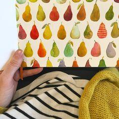 Watercolour pears by Kirsten Sevig