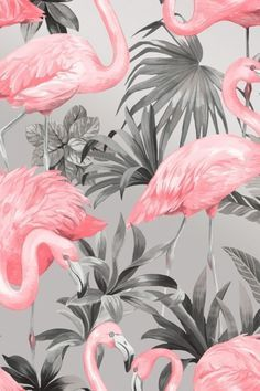 A recent addition to I Love Wallpaper's collection, this funky paper features some beautifully detailed artwork in the foreground including pink flamingos nestling amongst wonderfully coloured palm leaves, set upon a solid coloured background which really Leaves Wallpaper Iphone, Palm Wallpaper, Art Deco Wallpaper, Pattern Wallpaper, Funky Wallpaper, Pink Flamingo Wallpaper, Butterfly Wallpaper, Pink Flamingos, Tapete Pink