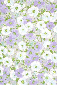 Floral Background                                                       …