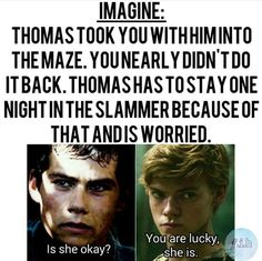 And Newt secretly loves you, that's why he is angry at Thomas! Maze Runner Funny, Maze Runner Thomas, Maze Runner Cast, Maze Runner Movie, Maze Runner Series, Thomas Brodie Sangster, Dylan O'brien, Newt Thomas, Maze Runner Characters