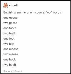 """Oo"" words to plural ""ee"" teehee! Funny Tumblr Text Posts, Tumblr Funny, Funny Posts, Funny Twitter Posts, Tumblr Love, Tumblr Stuff, Oo Words, Funny Quotes, Funny Memes"