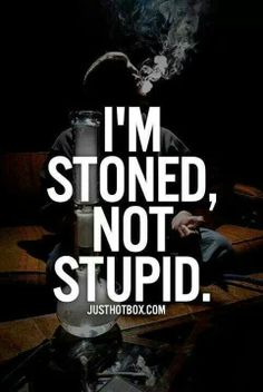 Buy top quality Cannabis Seeds from Seedsman. Our range of marijuana seeds is one of the largest online, with more than 3000 varieties of Cannabis Seeds. Stoner Quotes, Weed Quotes, Weed Memes, Stoner Art, Weed Humor, 420 Quotes, Bullshit Quotes, Stoner Humor, 420 Memes