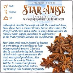 Also known as Chinese Anise and Badian, this fruit is a vital component to five-spice powder. Store the pods whole until you need them, as they keep longer, then grind them with a mortar and pestle. // #herbalmagick #kitchenwitch #staranise #spice #banishment #psychic #luck #clairvoyance #blessings #magick Pergola Planter, Five Spice Powder, Kitchen Witchery, Psychic Powers, Star Anise, Mortar And Pestle, Made Goods, Herbalism, Spices