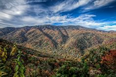 We love these Smoky Mountains!