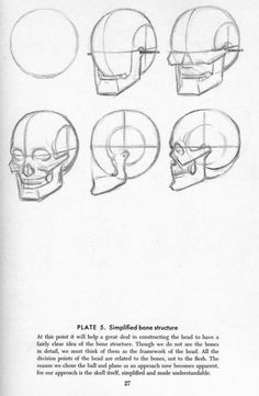Human Figure Drawing Reference Drawing the Head - Andrew Loomis Head Anatomy, Human Anatomy Drawing, Human Figure Drawing, Figure Drawing Reference, Anatomy Art, Anatomy Reference, Skull Anatomy, Anatomy Sketches, Art Drawings Sketches