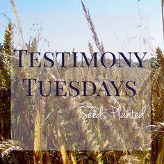 Testimony Tuesday: Melissa Haag | Holly Barrett  #WomenWhoInspire  #TestimonyTuesday #ReclaimingaRedeemedLife
