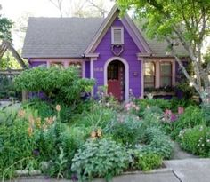 Magical-house and garden
