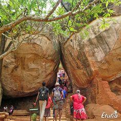 Sri Lanka Sri Lanka, Mount Rushmore, Mountains, Places, Nature, Travel, Naturaleza, Viajes, Destinations