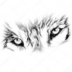 Скачать - Лицо волка — стоковая иллюстрация #38059527