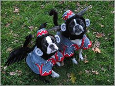 can't decide if this is super cute or super scary.  flying monkeys always creeped me out!!