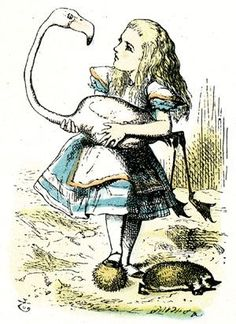 """Sometimes I've believed as many as six impossible things before breakfast."" - Lewis Carroll, Alice in Wonderland """