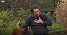 Ρεπόρτερ του BBC δέχεται επίθεση από λεμούριους (Video)
