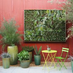 That plant art. Get the look.
