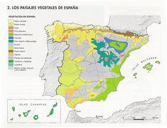 Mapa de la vegetación en España.