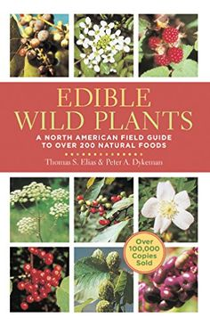 Edible Wild Plants: A North American Field Guide to Over 200 Natural Foods - Thomas S. Elias, Peter A. Dykeman I own this one it's excellent. Sterling Publishing, Edible Wild Plants, Poisonous Plants, Medicinal Plants, Herbal Plants, Plant Identification, Wild Edibles, Field Guide, Free Ebooks