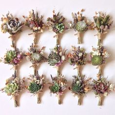 Assorted Succulent Boutonnieres // Flower Fields от Eucca на Etsy