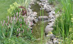 Ein Bachlauf im eigenen Garten? Auf unserer Themenseite erfahren Sie wie es geht!