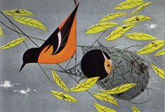 Charley Harper Illustration: Baltimore Oriole, Ford Times November 1959
