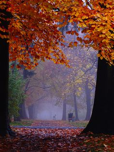 Wrocław - Park Skowroni | Flickr - Photo Sharing!