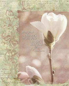 Vintage Flower Art - Reflect Your Hopes - by Jordan Blackstone jordan-blackstone.artistwebsites.com #vintageart #flowerart #inspirationalquote