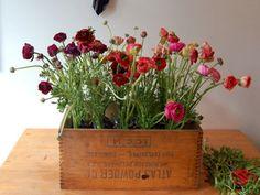 old box planter