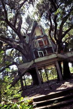 Victorian Treehouse (Honky Ranch in Brooksville, FL)