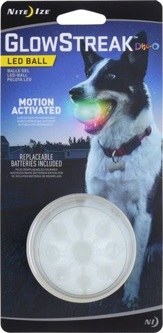 Whether your schedule keeps you from exercising your canine buddy during the day or you just prefer carousing with him or her at night, Nite Ize's tennis ball-sized GlowStreak K-9 LED Ball is the perfect exercise toy. Just push the button so the LED light begins its steady glow, and you can both see what you're doing and have fun doing it. Perfect for romps in the yard after sundown or making new friends at the park. Bright, durable, and water resistant, the GlowStreak floats and com...