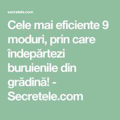 Cele mai eficiente 9 moduri, prin care îndepărtezi buruienile din grădină! - Secretele.com Photography, Home, Agriculture, Diet, Plant, Photograph, Fotografie, Photoshoot, Fotografia