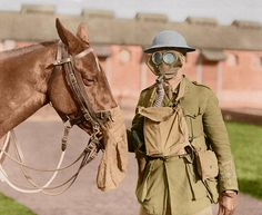 Soldier and horse wear gas masks at the Canadian Veterinary Headquarters. WWI